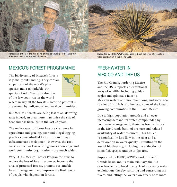 Forests are critical to the well-being of Mexico's rural poor because they   Supported by HSBC, WWF's work aims to break t...