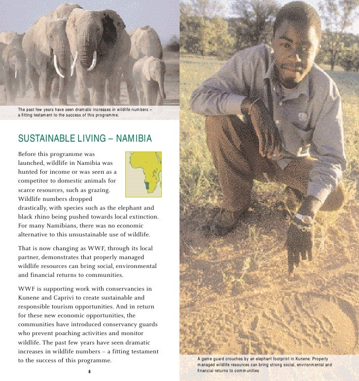 The past few years have seen dramatic increases in wildlife numbers – a fitting testament to the success of this programme....