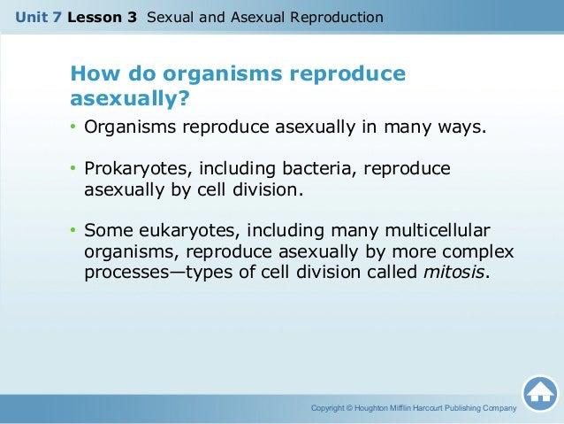 Prokaryotes reproduce asexually by