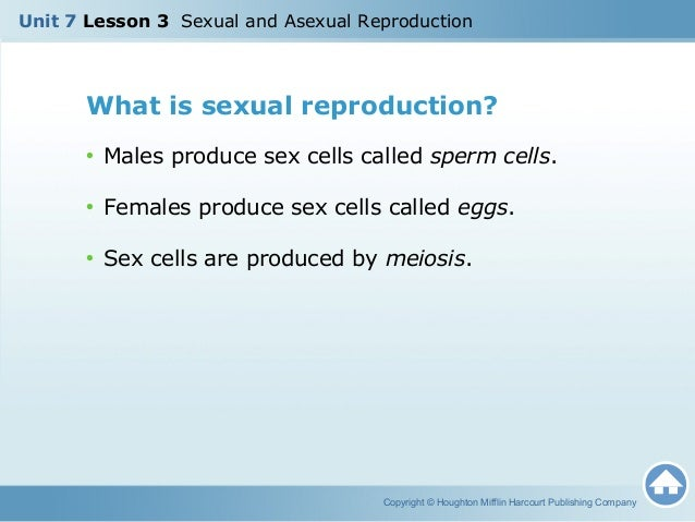 U7 l3 sexual asexual reproduction copyright houghton mifflin harcourt publishing company 9 ccuart