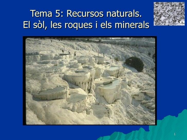 Tema 5: Recursos naturals. El sòl, les roques i els minerals