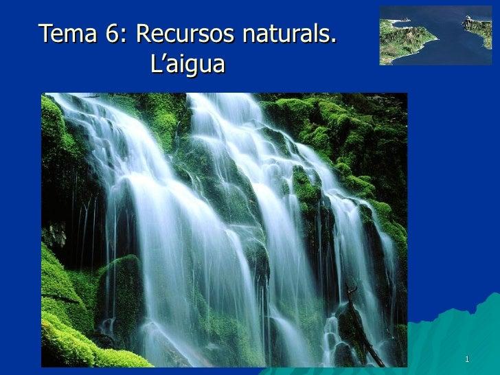 Tema 6: Recursos naturals. L'aigua
