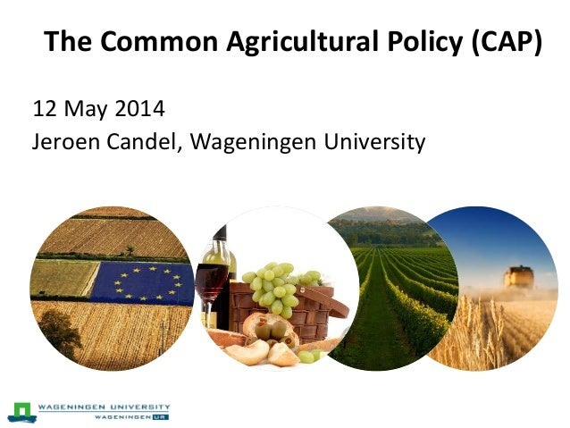 lecture common agriculture policy