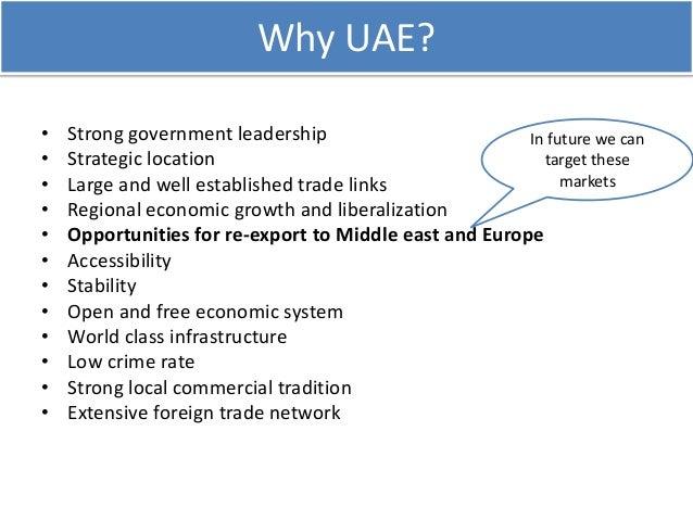 Uae market v1.1-2011 market study Slide 3