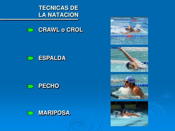 for Planos de piletas de natacion