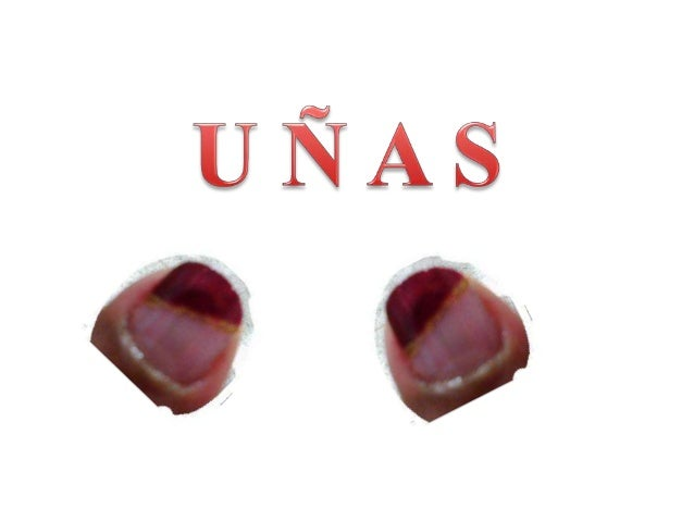 DIFERENTES MODELOS DE UÑAS www.solitatucucu.co.es