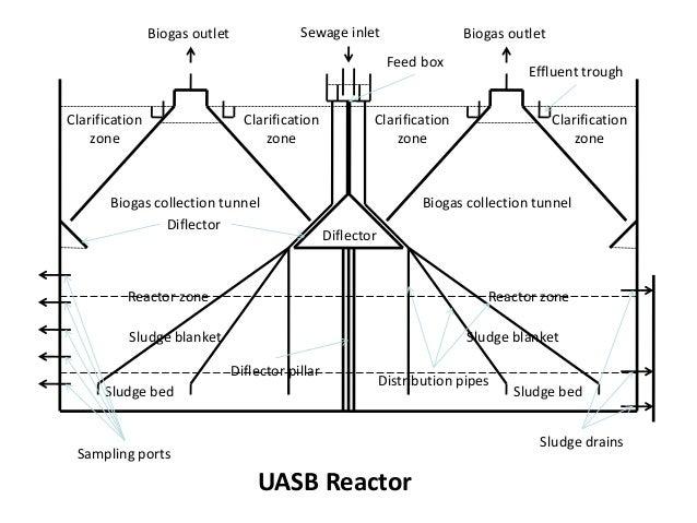 Uasb Reactors