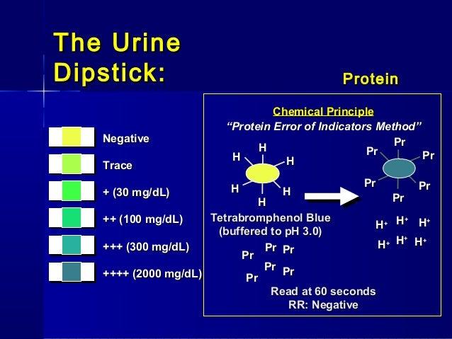 30 gram protein i dl