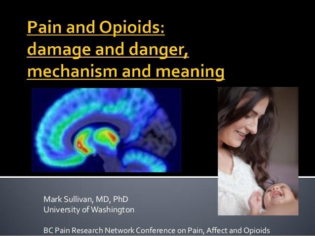 Mark Sullivan, MD, PhD University ofWashington BC Pain Research Network Conference on Pain, Affect and Opioids