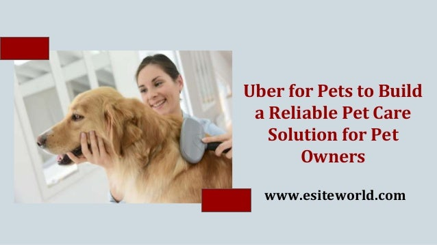 Uber for Pets to Build a Reliable Pet Care Solution for Pet Owners www.esiteworld.com
