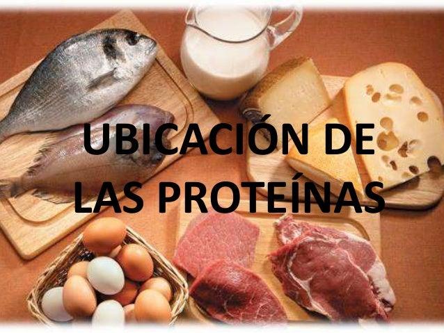 UBICACIÓN DE LAS PROTEÍNAS