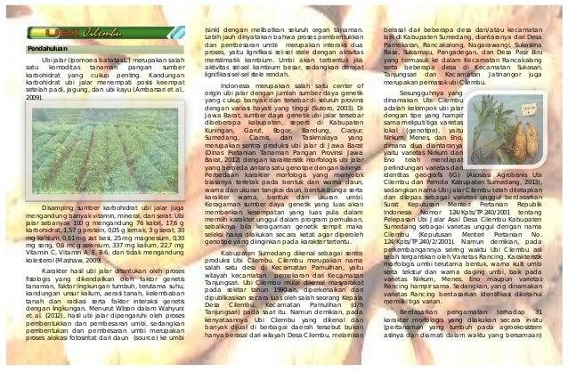 Pendahuluan Ubi jalar (Ipomoea batatas L.) merupakan salah satu komoditas tanaman pangan sumber karbohidrat yang cukup pen...