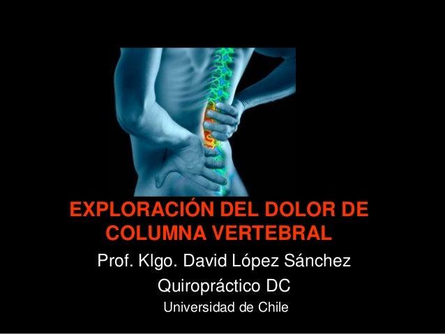 EXPLORACIÓN DEL DOLOR DE COLUMNA VERTEBRAL Prof. Klgo. David López Sánchez Quiropráctico DC Universidad de Chile