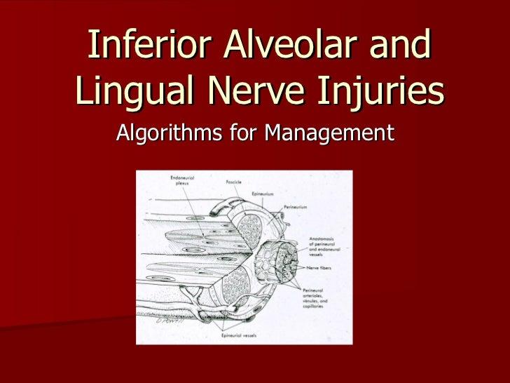 Inferior Alveolar and Lingual Nerve Injuries Algorithms for Management