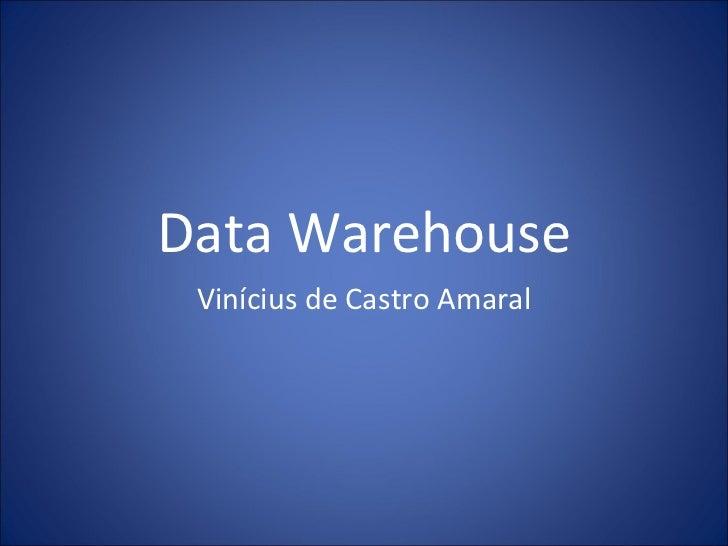 Data Warehouse Vinícius de Castro Amaral