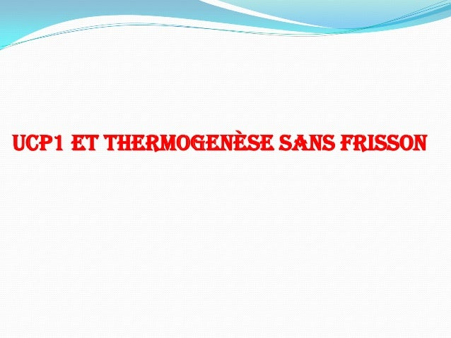UCP1 ET THERMOGENÈSE SANS FRISSON