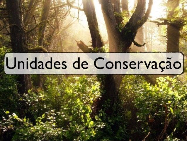 Unidades de Conservação