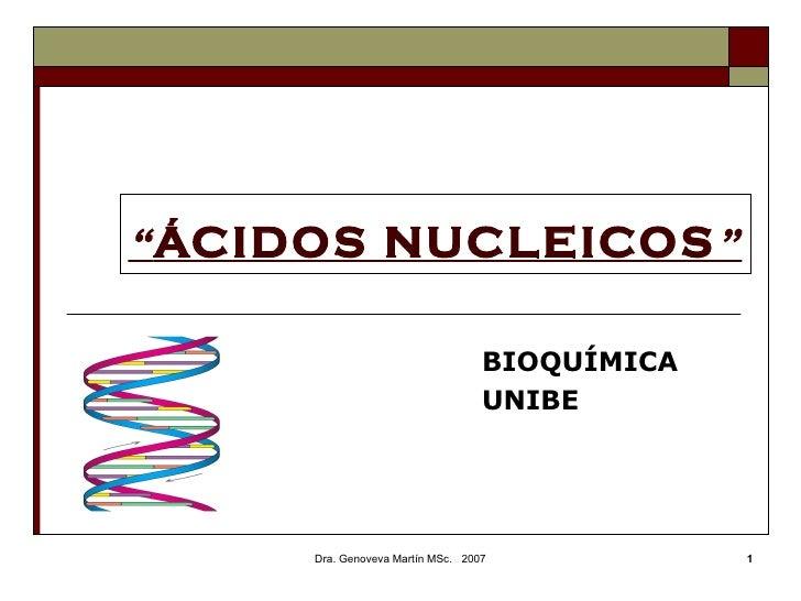 """ ÁCIDOS NUCLEICOS ""   BIOQUÍMICA  UNIBE Dra. Genoveva Martín MSc.  2007"