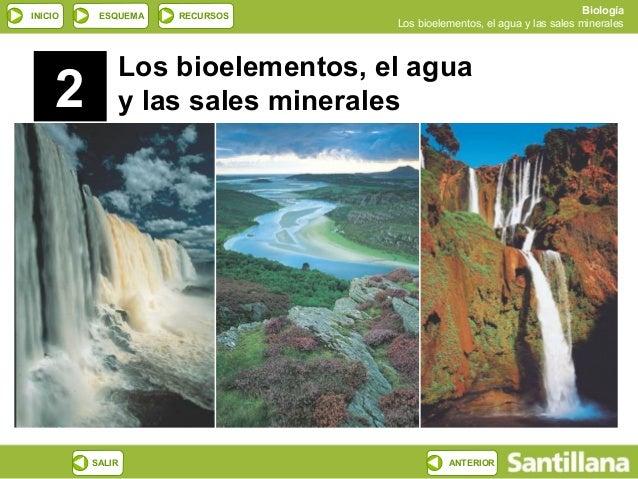INICIO ESQUEMA RECURSOS Biología Los bioelementos, el agua y las sales minerales SALIR ANTERIOR 2 Los bioelementos, el agu...
