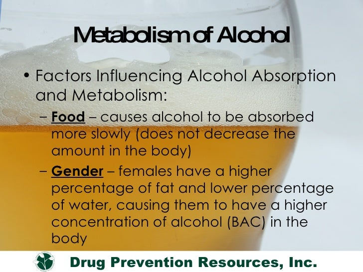 Does Eating While Drinking Slow The Absorption Of Alcohol