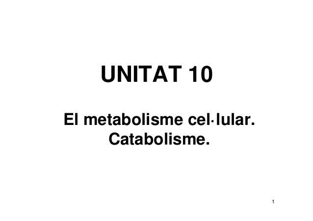 UNITAT 10El metabolisme cel·lular.     Catabolisme.                            1
