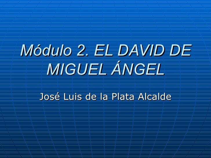 Módulo 2. EL DAVID DE MIGUEL ÁNGEL José Luis de la Plata Alcalde