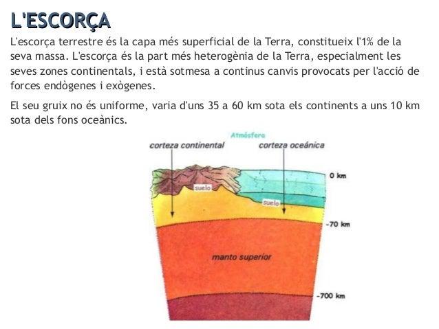 L'ESCORÇAL'ESCORÇA L'estructura vertical de l'escorça varia d'unes zones a unes altres, distingim dues zones ben diferenci...