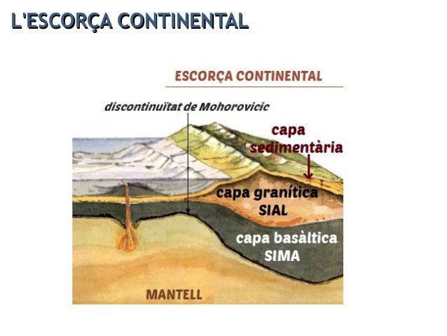 L'ESCORÇA OCEÀNICAL'ESCORÇA OCEÀNICA És molt més prima (entre 6-11 km) que la continental i forma els fons oceànics. És mo...