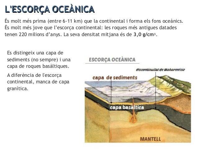 L'ESCORÇA CONTINENTAL I OCEÀNICAL'ESCORÇA CONTINENTAL I OCEÀNICA