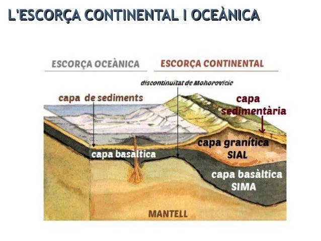 L'ESCORÇA : estructura en horitzontalL'ESCORÇA : estructura en horitzontal
