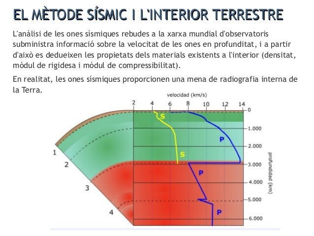 L'anàlisi de les discontinuïtats sísmiques ha permès elaborar un model de l'interior de la Terra segons el qual el nostre ...