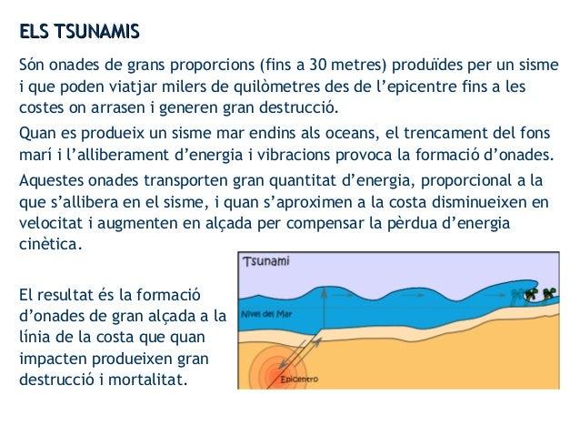 ELS TSUNAMISELS TSUNAMIS Són onades de grans proporcions (fins a 30 metres) produïdes per un sisme i que poden viatjar mil...