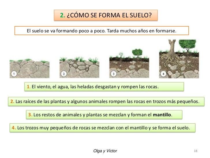Unidad 4 las rocas los minerales y el suelo for Materiales que forman el suelo