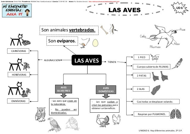 UNIDAD 6: Hay diferentes animales. 2º E.P. UD 6 Autor pictogramas: Sergio Palao Procedencia: ARASAAC http://catedu.es/aras...