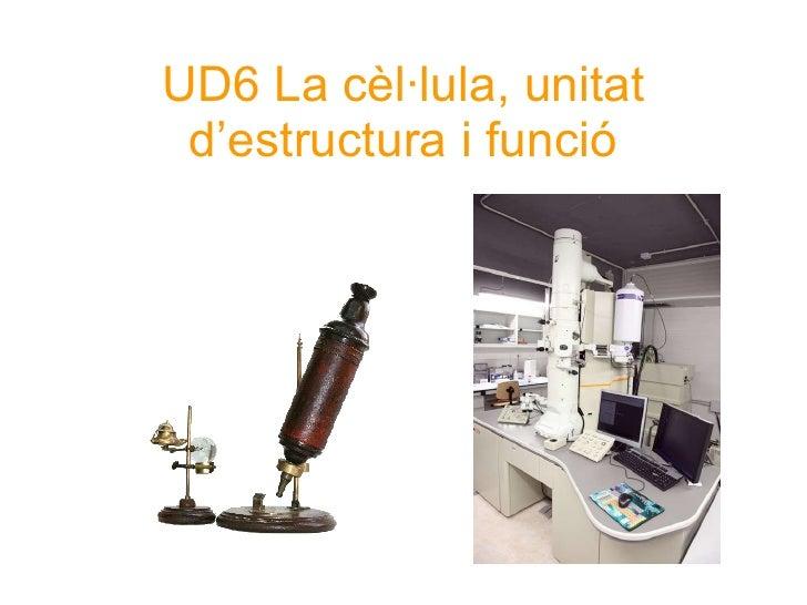 UD6 La cèl·lula, unitat d'estructura i funció