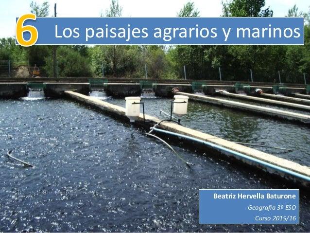 Los paisajes agrarios y marinos Beatriz Hervella Baturone Geografía 3º ESO Curso 2015/16