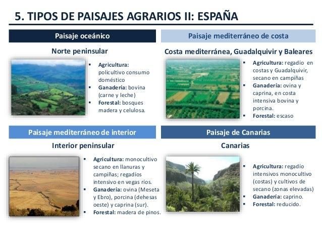 Paisajes agrarios tema 6 - Tipos de paisajes ...