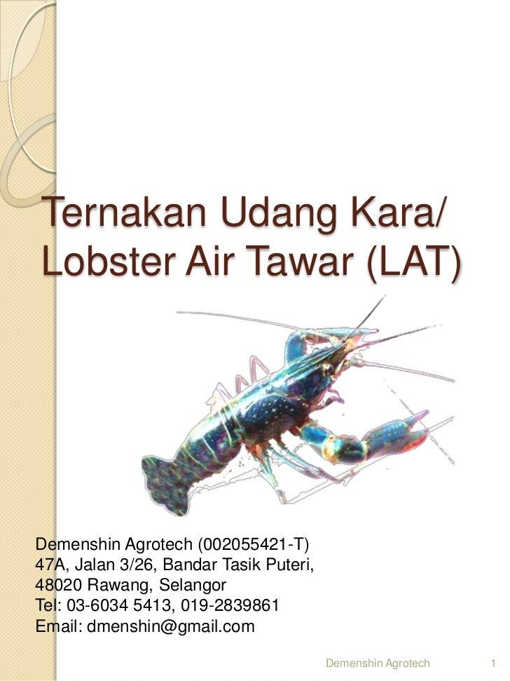 Ternakan Udang Kara/Lobster Air Tawar (LAT)Demenshin Agrotech (002055421-T)47A, Jalan 3/26, Bandar Tasik Puteri,48020 Rawa...
