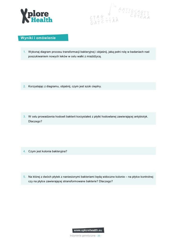 Wyniki i omówienie 1. Wykonaj diagram procesu transformacji bakteryjnej i objaśnij, jaką pełni rolę w badaniach nad    pos...