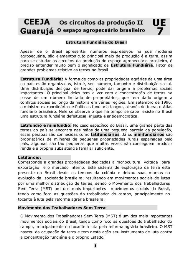 Estrutura Fundiária do Brasil  Apesar de o Brasil apresentar números expressivos na sua moderna  agropecuária, são element...