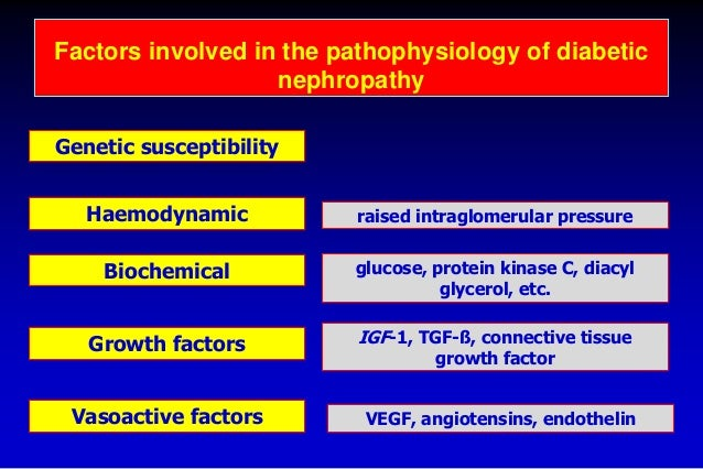 biochemical factors in diabetic nephropathy Abstract several genes that predispose to type 2 diabetes have recently been identified in addition to the recognized and powerful effects of environmental factors, there is abundant evidence in support of genetic susceptibility to the microvascular complication of nephropathy in individuals with both type 1 and type 2 diabetes.