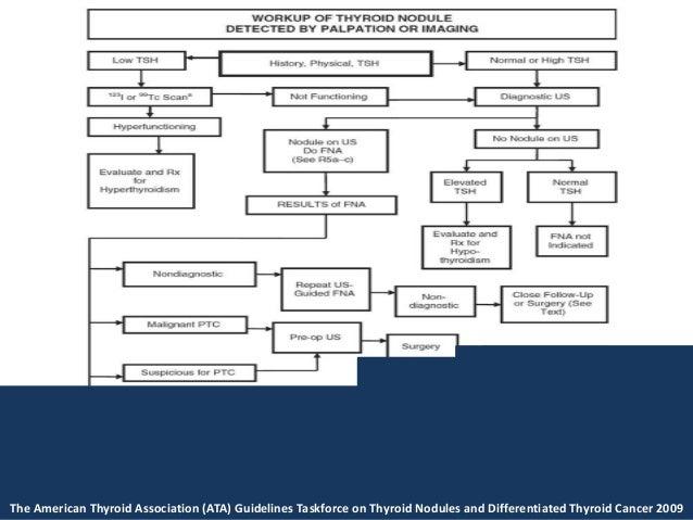 american thyroid association guidelines 2017 pdf
