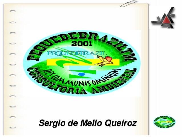 PEQUEDEBRAZIL ™ Sergio de Mello Queiroz