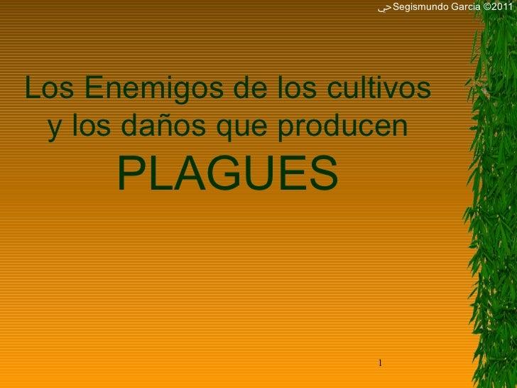 ﴀ Segismundo Garcia ©2011 Los Enemigos de los cultivos y los daños que producen PLAGUES