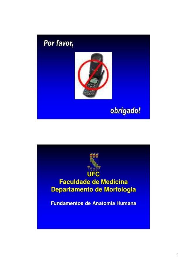 1 UFCUFC Faculdade de MedicinaFaculdade de Medicina Departamento de MorfologiaDepartamento de Morfologia Fundamentos de An...