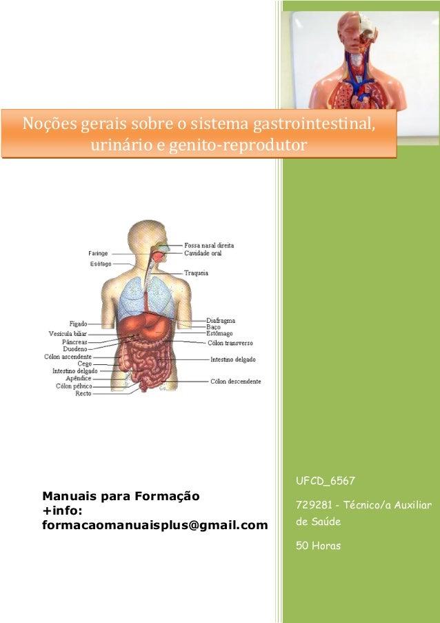 Noções gerais sobre o sistema gastrointestinal, urinário e genito-reprodutor  UFCD_6567  Manuais para Formação +info: form...