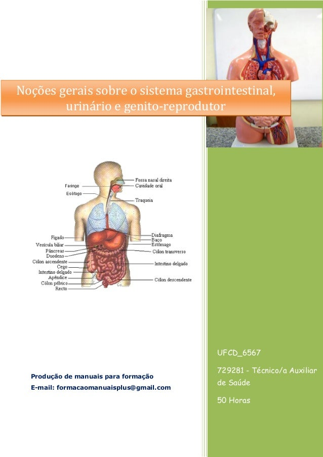 UFCD_6567 729281 - Técnico/a Auxiliar de Saúde 50 Horas Produção de manuais para formação E-mail: formacaomanuaisplus@gmai...