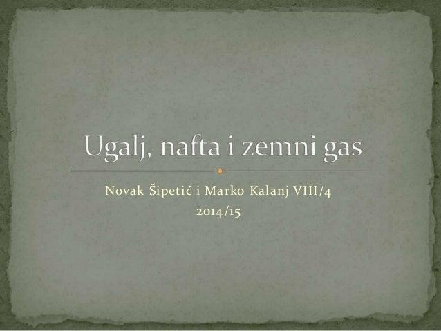 Novak Šipetić i Marko Kalanj VIII/4 2014/15