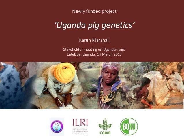 Newly funded project 'Uganda pig genetics' Karen Marshall Stakeholder meeting on Ugandan pigs Entebbe, Uganda, 14 March 20...