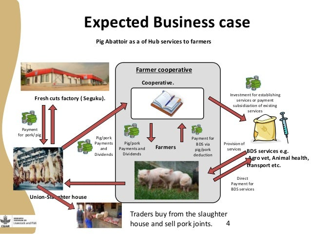 Pig farming business plan document